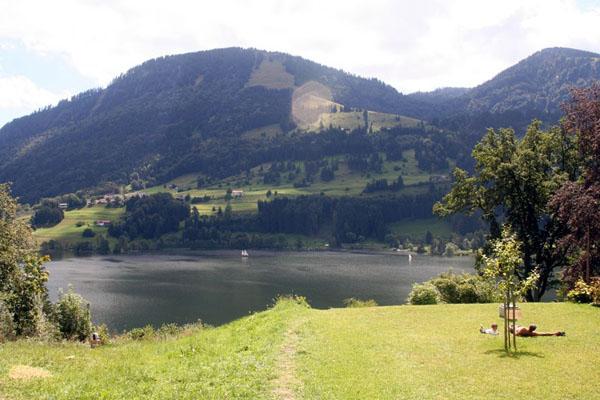 Вид на озеро Альп и город Имменштадт