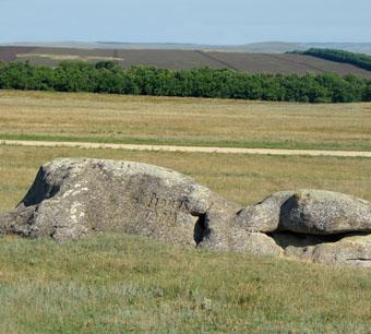 Каменные обитатели горы Голубиной