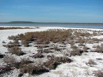 Соленые озера в долине Калауса. Краеведение