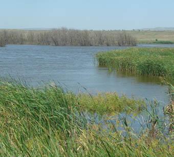 рыбалка в селе безопасном ставропольского края