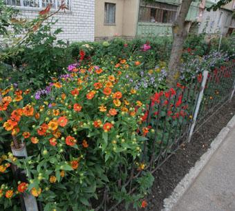 Город - цветущий сад