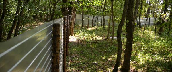 Ставрополь потерял 200 гектаров леса
