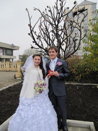 В Ставрополе «выросло» дерево Сбербанка
