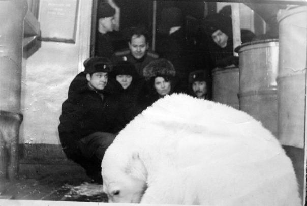 Как солдаты медвежонка спасали