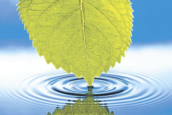 Вода — сама жизнь. Вода — для жизни