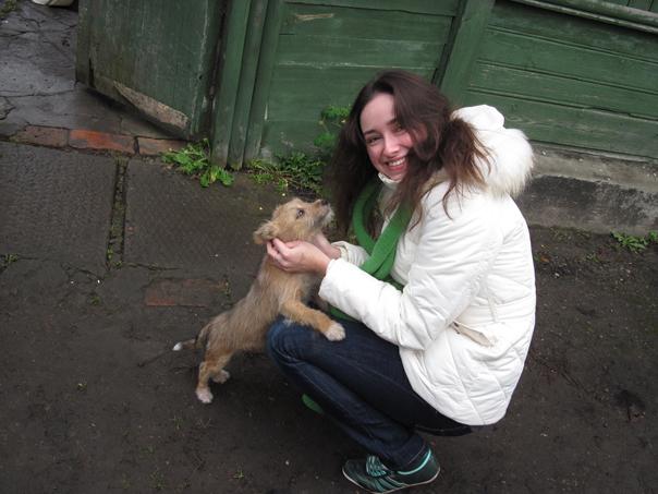 В Ставрополе откроется центр помощи бездомным животным