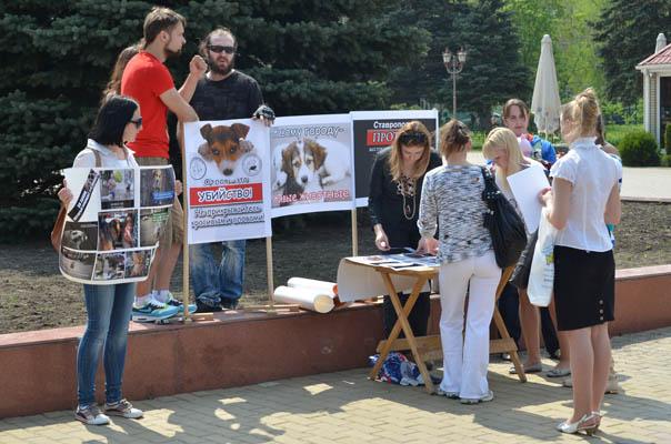 Ставрополь против жестокого обращения с животными