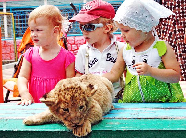 В ставропольском  зоопарке парка Победы демографический взрыв