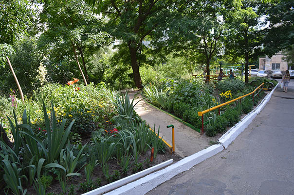 Город - цветущий сад. Выпуск 5