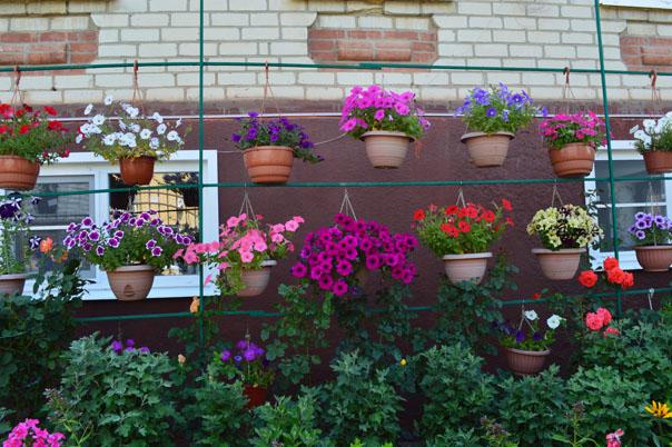 Город - цветущий сад. Выпуск 6