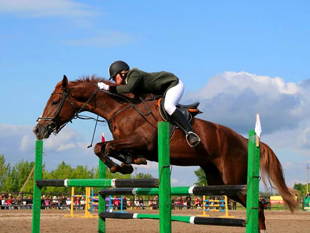На лошади - в год Лошади