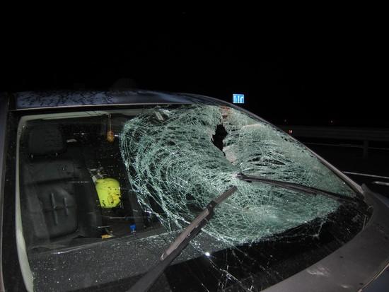 ВКочубеевском районе иностранная машина насмерть задавила пенсионерку