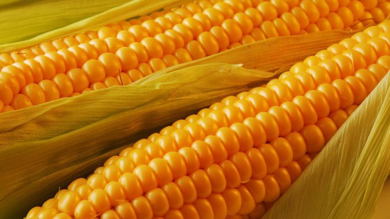 НаСтаврополье мужчина похитил 228 килограммов кукурузы