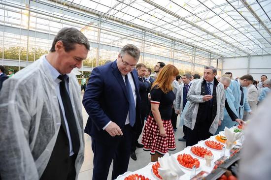 Новый тепличный комплекс открылся наСтаврополье