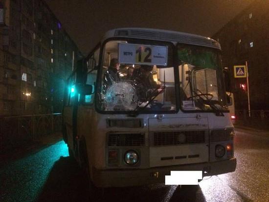 ВСтаврополе шофёр автобуса сбил пешехода на«зебре»