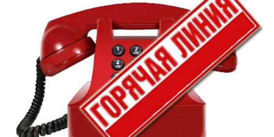 НаСтаврополье сообщить оподозрительных квартирантах можно по«горячей линии»